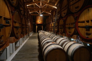 Aging wine at Chateau de Beaucastel